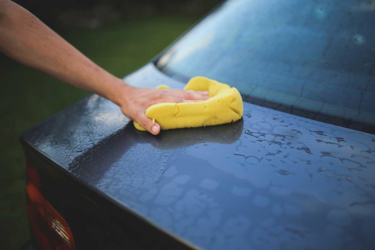 Equipos de limpieza - Suministros y Servicios