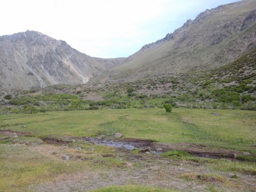 11500 ha Cordillera